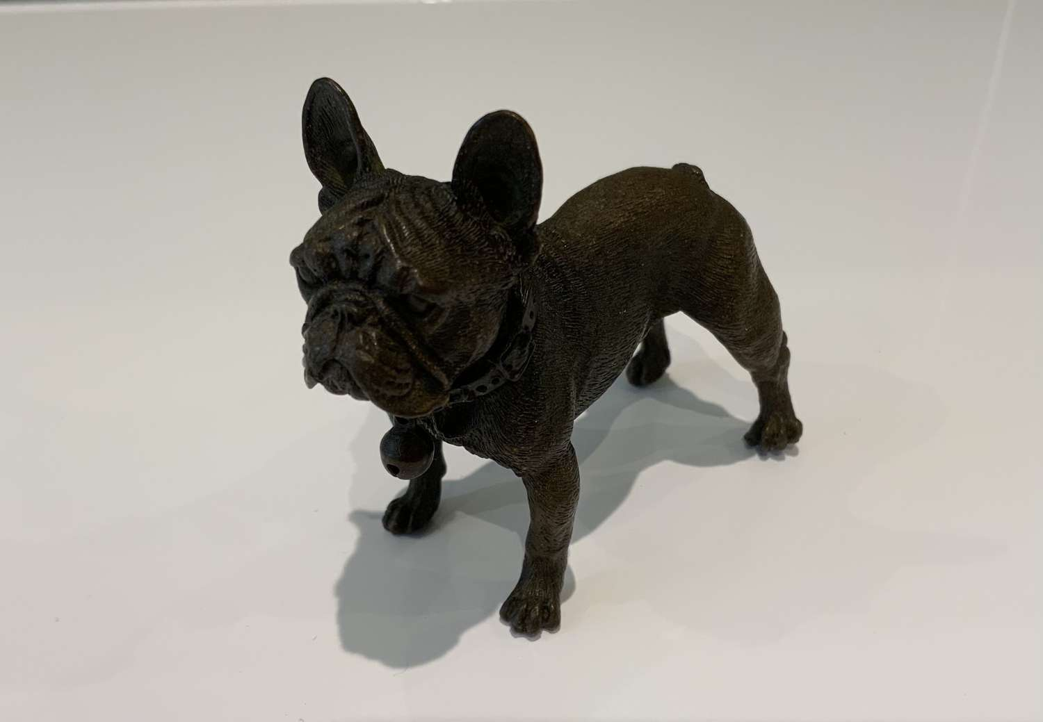 Bronze French Bulldog